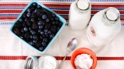 homemade-yogurt-ingredients-tools